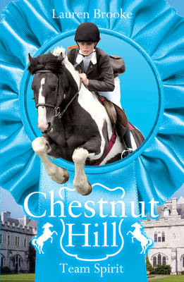 Team Spirit - Chestnut Hill 5 (Paperback)