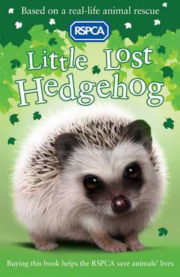 Little Lost Hedgehog - RSPCA 1 (Paperback)
