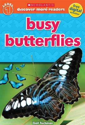 Busy Butterflies - Discover More (Paperback)