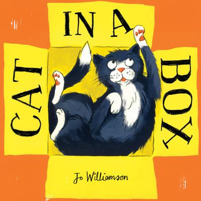 Cat in a Box (Hardback)