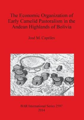 The Economic Organization of Early Camelid Pastoralism in the Andean Highlands of Bolivia - British Archaeological Reports International Series (Paperback)