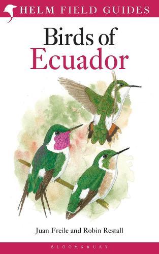 Birds of Ecuador - Helm Field Guides (Paperback)