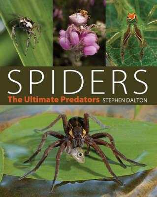 Spiders: The Ultimate Predators (Hardback)