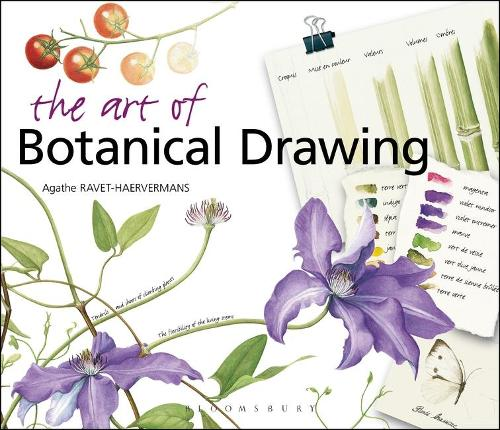 The Art of Botanical Drawing (Paperback)