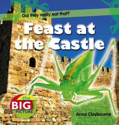 Feast at the Castle - The Big Picture (Hardback)