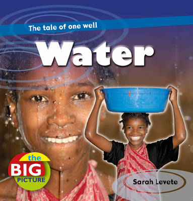 Water - The Big Picture (Hardback)