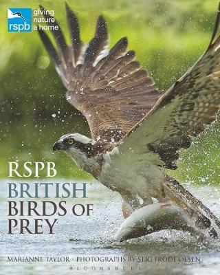 RSPB British Birds of Prey - RSPB (Hardback)