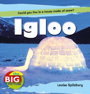 Igloo - Big Picture (Paperback)