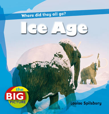 Ice Age - Big Picture (Paperback)