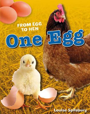 One Egg: Age 6-7, average readers - White Wolves Non Fiction (Hardback)