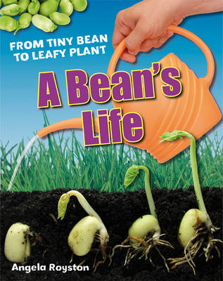 A Bean's Life: Age 6-7, below average readers - White Wolves Non Fiction (Hardback)