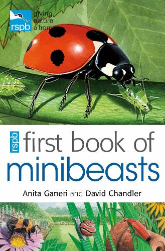 RSPB First Book Of Minibeasts (Paperback)