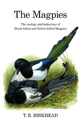 The Magpies: The Ecology and Behaviour of Black-billed and Yellow-billed Magpies - Poyser Monographs (Hardback)