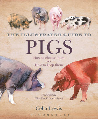 The Illustrated Guide to Pigs: How To Choose Them - How To Keep Them (Hardback)