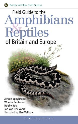 Field Guide to the Amphibians and Reptiles of Britain and Europe (Paperback)