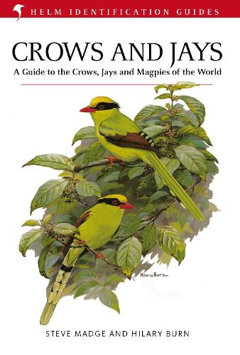 Crows and Jays - Helm Identification Guides (Hardback)