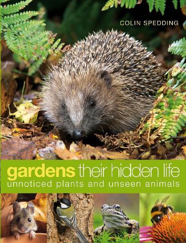 Gardens: their hidden life: Unnoticed plants and unseen animals (Hardback)