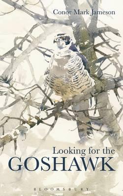 Looking for the Goshawk (Hardback)