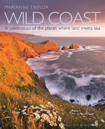 Wild Coast: An exploration of the places where land meets sea (Hardback)