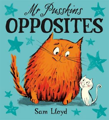 Mr. Pusskins Opposites - Mr Pusskins 12 (Board book)