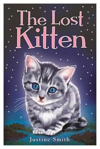 The Lost Kitten (Paperback)