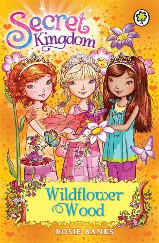 Secret Kingdom: Wildflower Wood: Book 13 - Secret Kingdom (Paperback)