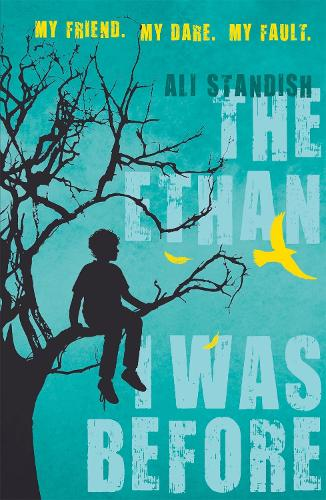The Ethan I Was Before (Paperback)