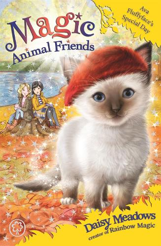 Ava Fluffyface's Special Day: Book 27 - Magic Animal Friends (Paperback)