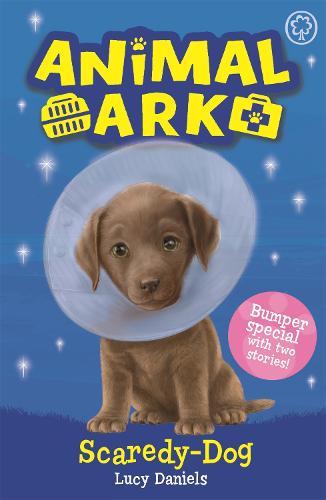 Animal Ark, New 2: Scaredy-Dog: Special 2 - Animal Ark (Paperback)