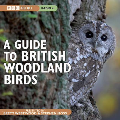 A Guide to British Woodland Birds (CD-Audio)