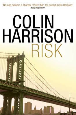 Risk (Paperback)