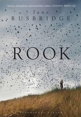 Rook (Paperback)