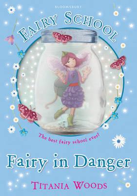 Fairy School 14: Fairy in Danger (Paperback)