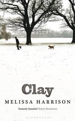 Clay (Hardback)
