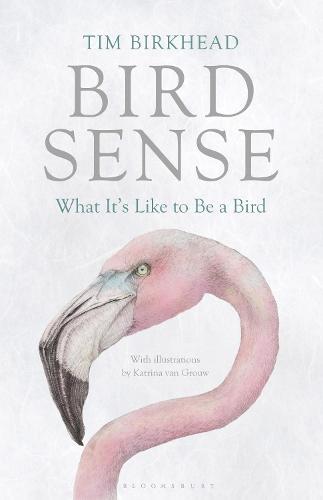 Bird Sense: What It's Like to Be a Bird (Paperback)