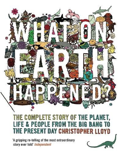 What on Earth Happened?: The Complete Story of the Planet, Life and People from the Big Bang to the Present Day (Paperback)