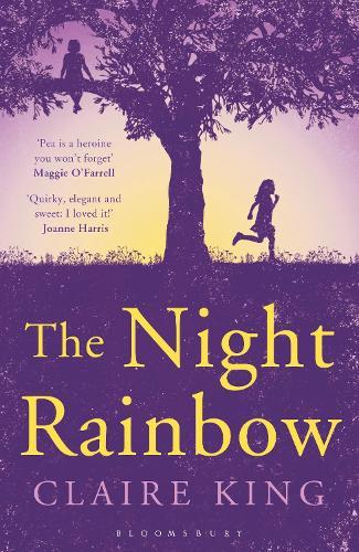 The Night Rainbow (Paperback)