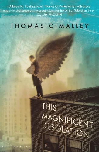 This Magnificent Desolation (Paperback)