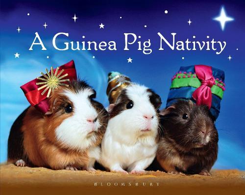 A Guinea Pig Nativity (Hardback)