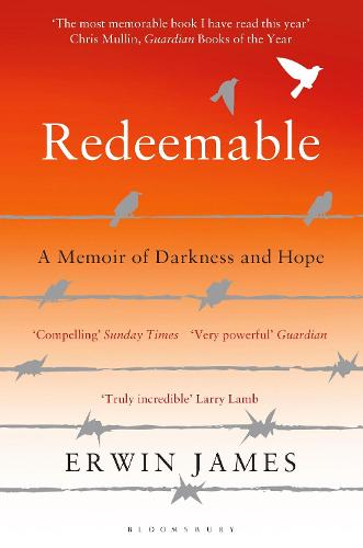 Redeemable: A Memoir of Darkness and Hope (Paperback)