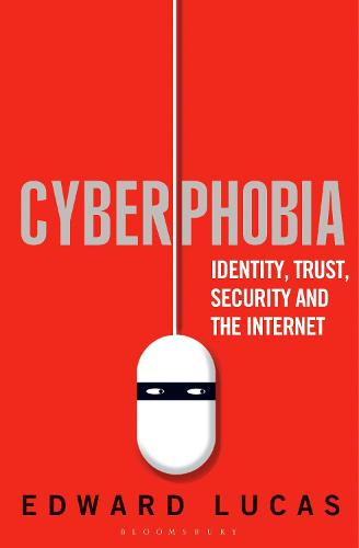 Cyberphobia: Identity, Trust, Security and the Internet (Paperback)