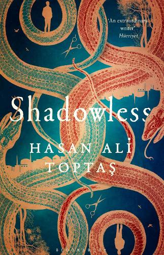 Shadowless (Hardback)