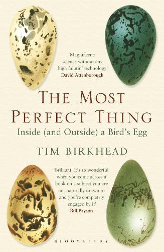 The Most Perfect Thing: Inside (and Outside) a Bird's Egg (Paperback)