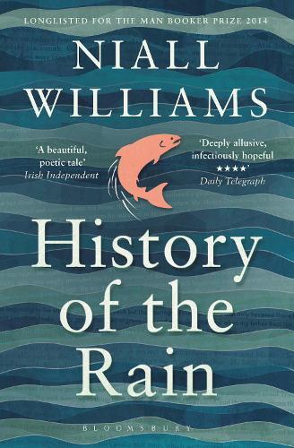 History of the Rain (Paperback)