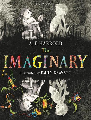 The Imaginary (Hardback)