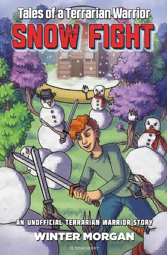 Snow Fight (Paperback)