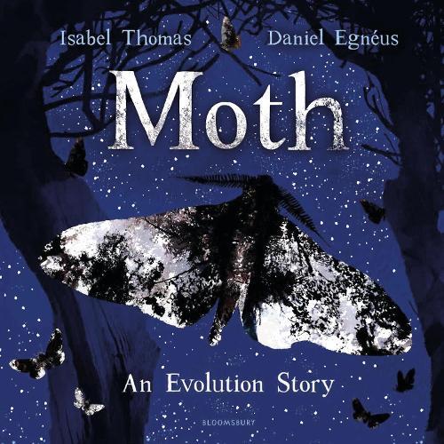 Moth (Hardback)