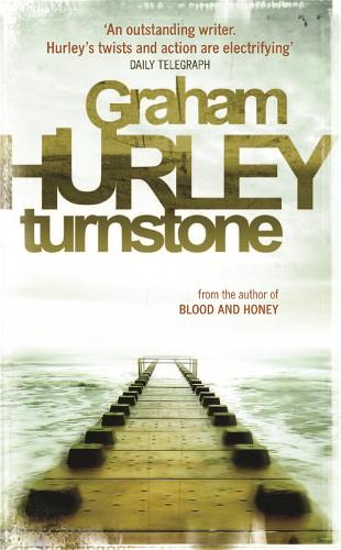 Turnstone (Paperback)