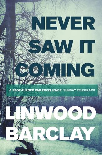 Never Saw it Coming (Paperback)