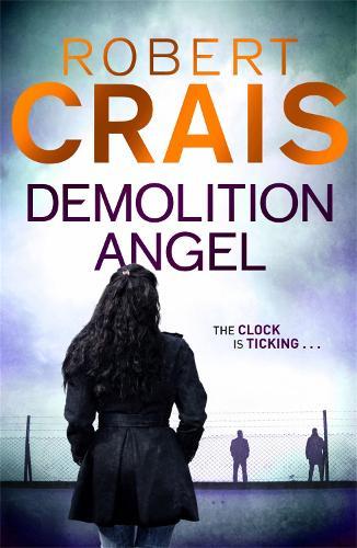 Demolition Angel (Paperback)